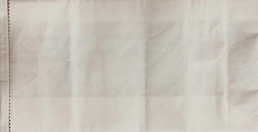 Generic white airsickness bags